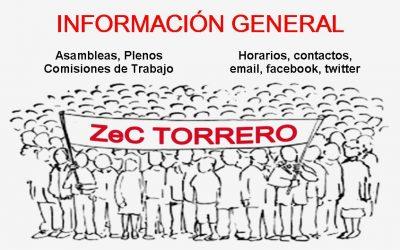 Información general de Zaragoza en Común Torrero