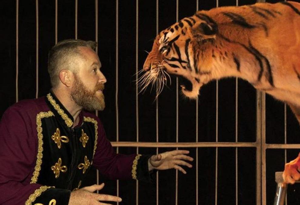 Zaragoza en Común celebra que finalmente no habrá circo con animales en nuestra ciudad